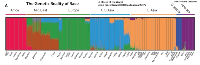 RacesoftheWorld3
